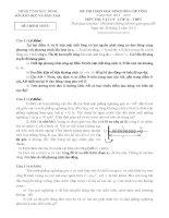 Đề thi học sinh giỏi tỉnh Bắc Ninh năm 2013 môn vật lý