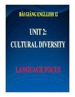 Bài giảng tiếng anh 12 unit 2 cultural diversity