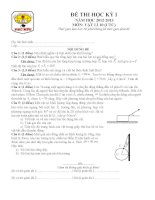 Đề và đáp án thi học kì 1 môn Vật lí 10
