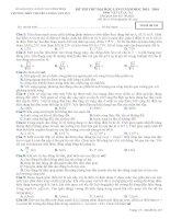 Đề thi thử Đại Học lần 2 năm 2014 THPT chuyên Lương Văn Tụy môn vật lý (1)