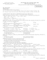 Đề kiểm tra học kì môn Hóa lớp 11 (4)