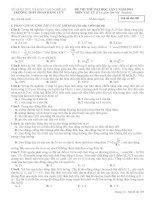 Đề thi thử lần 1 trường THPT Phan Đăng Lưu Yên Thành môn vật lý (1)