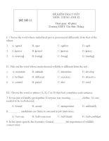 Đề KT 1 tiết môn tiếng Anh lớp 12 - Đề số 11