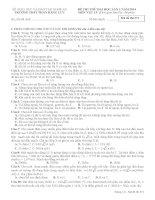 Đề thi thử lần 1 trường THPT Phan Đăng Lưu Yên Thành môn vật lý (2)
