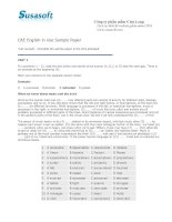 CAE English in Use Sample Paper
