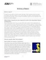 Writing a report in FCE paper