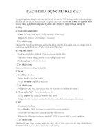 Cách chia động từ đầu câu Tài liệu ngữ pháp Tiếng Anh cơ bản