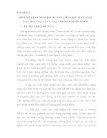 SKKN MỘT SỐ KINH NGHIỆM HƯỚNG DẪN HỌC SINH GIẢI CÁC BÀI TOÁN CỰC TRỊ TRONG ĐẠI SỐ LỚP 8