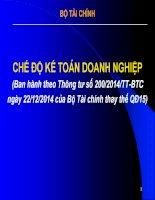 Bài giảng Chế độ kế toán doanh nghiệp (Ban hành theo Thông tư số 200-2014-TT-BTC ngày 22-12-2014 của Bộ Tài chính thay thế QĐ15) - Bộ Tài chính