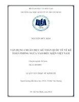 Vận dụng chuẩn mực kế toán quốc tế về kế toán phòng ngừa vào điều kiện việt nam