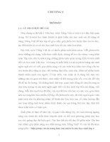 SKKN Biện pháp rèn kĩ năng làm văn miêu tả cho học sinh lớp 4 TIỂU HỌC PHỔ VÂN