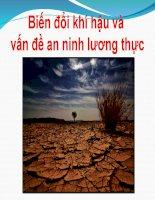 Biến đổi khí hậu và vấn đề an ninh lương thực