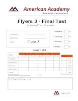 Flyers 3 - FINAL ODI