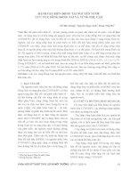 Đánh Giá Biến Động Tài Nguyên Nước Lưu Vực Sông Đồng Nai Và Vùng Phụ Cận