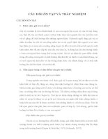 Tổng hợp câu hỏi và đáp án ôn tập môn Hành vi tổ chức