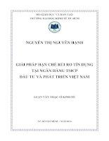 GIẢI PHÁP HẠN CHẾ RỦI RO TÍN DỤNG TẠI NGÂN HÀNG THƯƠNG MẠI CỔ PHẦN ĐẦU TƯ VÀ PHÁT TRIỂN VIỆT NAM.PDF