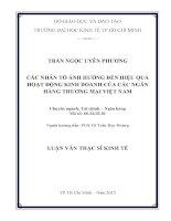 Luận văn thạc sĩ Các nhân tố ảnh hưởng đến hiệu quả hoạt động kinh doanh của ngân hàng thương mại Việt Nam