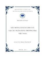 Xác định lãi suất cho vay tại các ngân hàng thương mại Việt Nam  Luận văn thạc sĩ