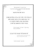 Luận văn Luận văn Ảnh hưởng của các yếu tố tâm lý đến hiệu quả của nhà đầu tư cá nhân trên thị trường chứng khoán Việt Nam