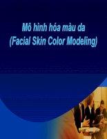 Mô hình hóa màu da (Facial Skin Color Modeling)