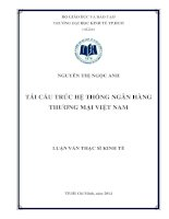 Tái cấu trúc hệ thống ngân hàng thương mại Việt Nam