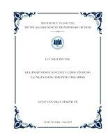 Luận văn thạc sĩ Giải pháp nâng cao chất lượng tín dụng tại Ngân hàng TMCP Phương Đông
