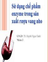 Sử dụng chế phẩm enzyme trong sản xuất rượu vang nho