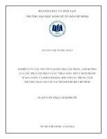 NGHIÊN CỨU CÁC YẾU TỐ TẠO GIÁ TRỊ CẢM NHẬN, ẢNH HƯỞNG CỦA GIÁ TRỊ CẢM NHẬN VÀ SỰ THỎA MÃN ĐẾN Ý ĐỊNH HÀNH VI MUA SẮM CỦA KHÁCH HÀNG ĐỐI VỚI CÁC TRUNG TÂM THƯƠNG MẠI CAO CẤP TẠI TPHCM.PDF