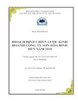 HOẠCH ĐỊNH CHIẾN LƯỢC KINH DOANH CÔNG TY SƠN HÒA BÌNHN NĂM 2020.PDF