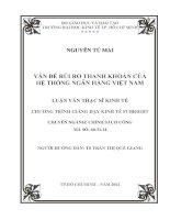 Luận văn thạc sĩ  Vấn đề rủi ro thanh khoản của hệ thống ngân hàng Việt Nam