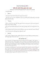 BÀI VĂN HAY LỚP 6 - Kể về một thầy giáo yêu quý