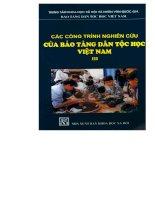 Các công trình nghiên cứu của bảo tàng dân tộc học Việt Nam Tập III
