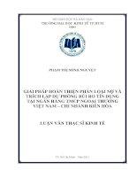 Giải pháp hoàn phân loại nợ và trích lập dự phòng rủi ro tín dụng tại Ngân hàng Thương mại Cổ phần Ngoại thương Việt Nam - Chi nhánh Biên Hòa