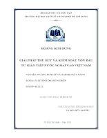 Giải pháp thu hút và kiểm soát vốn đầu tư gián tiếp nước ngoài vào Việt Nam