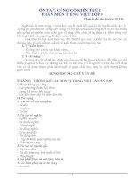 Chuyên đề Ôn tập Tiếng Việt lớp 9