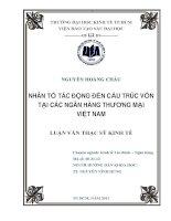 Nhân tố tác động đến cấu trúc vốn tại các ngân hàng thương mại Việt Nam