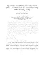 Nghiên cứu tương đương biểu cảm giữa tác phẩm Cuốn theo chiều gió và bản dịch tiếng Việt của Dương Tương