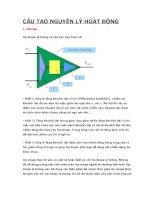 BÀI TẬP LỚN CẢM BIẾN ĐO LƯỜNG VÀ XỬ LÝ TÍN LIỆU Bộ khuếch đại thuật toán OPAMP
