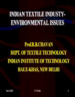 Indian textile industy environmental issues