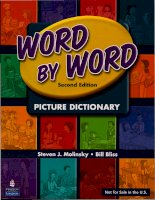 Word by Word Picture Dictionary Second Edition Red
