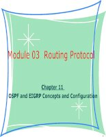 Tài liệu giảng dạy CCNA - module 03 chapter 12-OSPF and EIGRP Concepts and Configuration