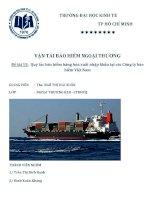 Quy tắc bảo hiểm hàng hóa xuất nhập khẩu tại các Công ty bảo hiểm Việt Nam