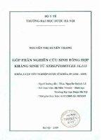 Góp phần nghiên cứu sinh tổng hợp kháng sinh từ streptomyces 16 113