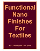 Functional Nano Finishes For Textiles