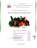Tiểu luận công nghê chế biến đồ hộp thực phẩm chương 2 trái cây và rau quả
