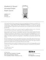 handbook of biomass downdraft gasifier