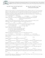 Đề thi thử môn hóa giải chi tiết