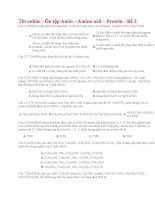 22 thi online   ôn tập amin – amino axit – protein   đề 2