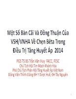 Một Số Bàn Cãi Và Đồng Thuận Của VSH/VNHA Về Chẹn Bêta Trong Điều Trị Tăng Huyết Áp 2014
