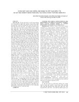 KHẢO sát các đặc điểm lâm SÀNG và kết QUẢ điều TRỊ dị vật nội NHÃN ở bán PHẦN SAU tại KHOA CHẤN THƯƠNG năm 2012